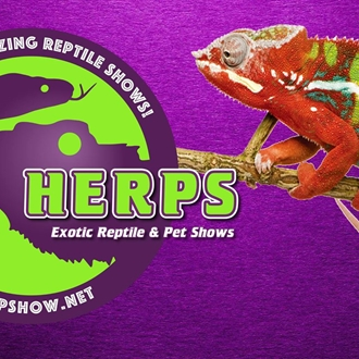 The HERPS Reptile Expo